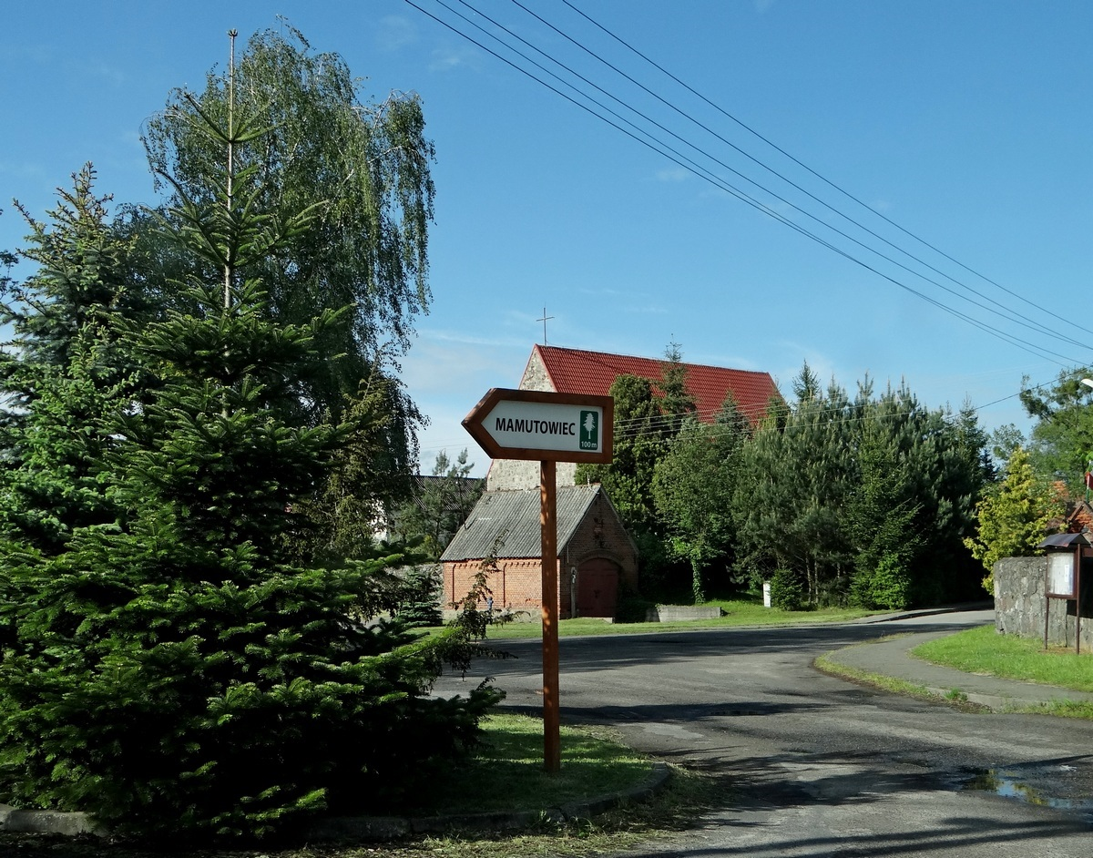 największy czat w polsce Dąbrowa Górnicza